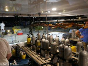 Dykkerutstyr ble pakket ut og klargjort. 6 dager med dykking i særklasse ventet oss.